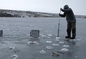 зимняя ловлч карпа